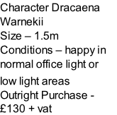 Character Dracaena Warnekii   Size – 1.5m  Conditions – happy in normal office light or  low light areas  Outright Purchase - £130 + vat